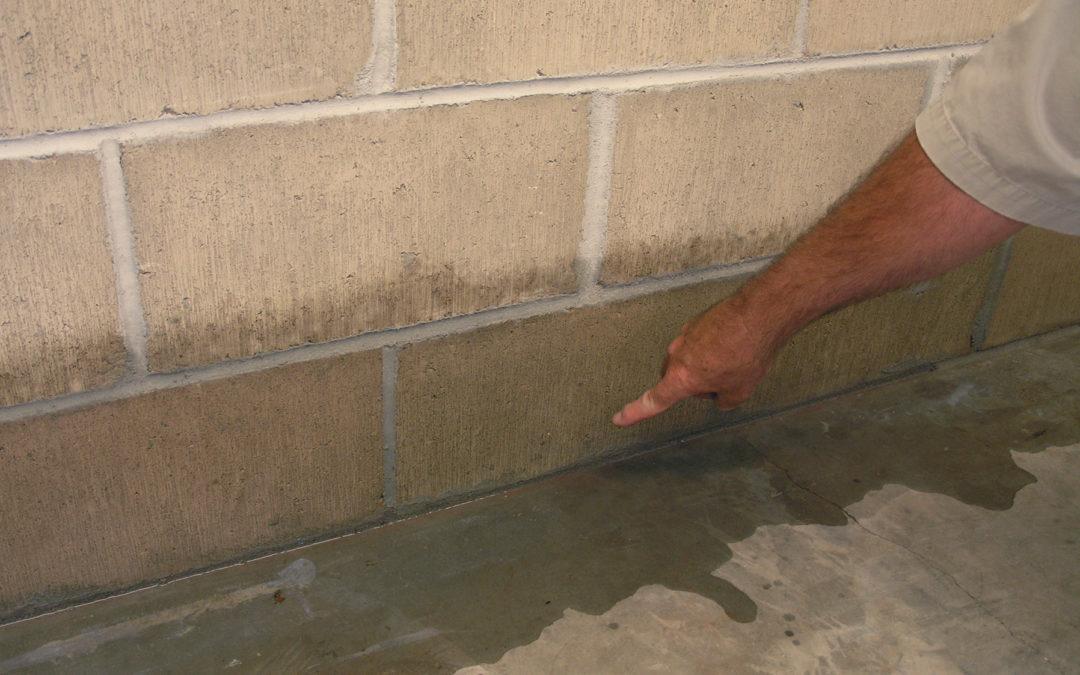 repair leaky basement